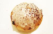 J.Co Donuts - Donna Italiano