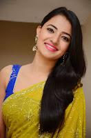 Tamil Actress Ruksha Saree Stills 3.jpg