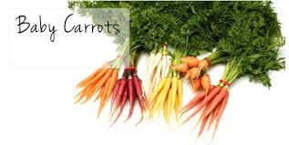 Baby Carrots is the right food diet during pregnancy, , pregnant woman should have
