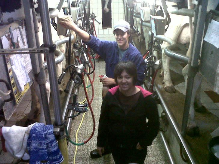 Thyert Farm - Netherland
