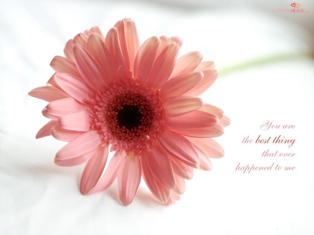 http://1.bp.blogspot.com/-mwszzUbYCig/TcesA3AV1NI/AAAAAAAAACg/4jVmI2W5j7o/s1600/love-wallpaper14.jpg
