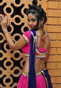Shreya Vyas photos at Bengal Tiger audio-thumbnail-14