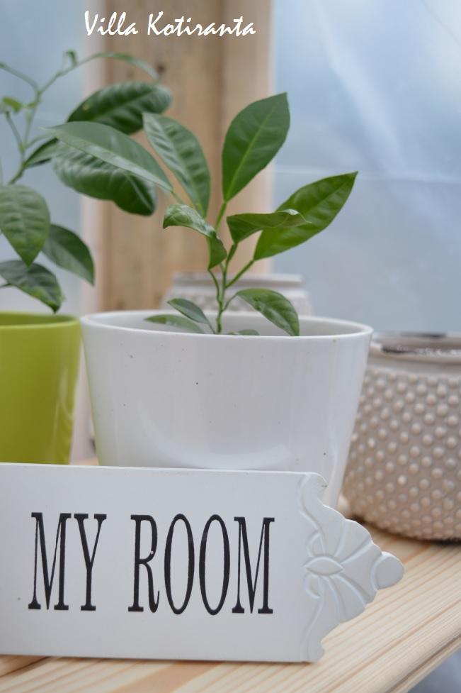 Minun kesähuoneeni