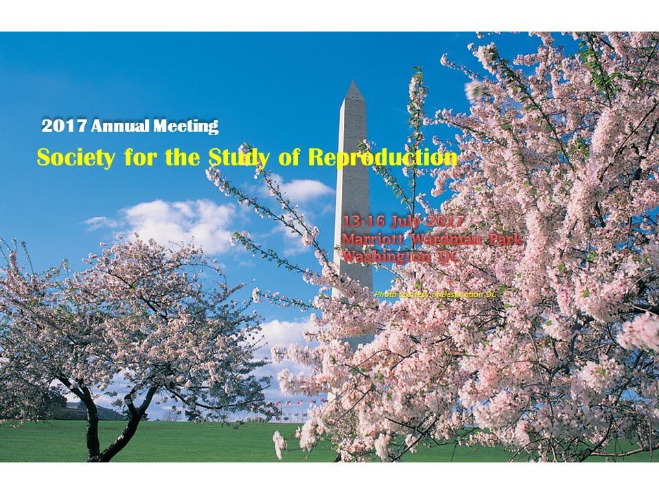 SSR 2017 Annual Meeting