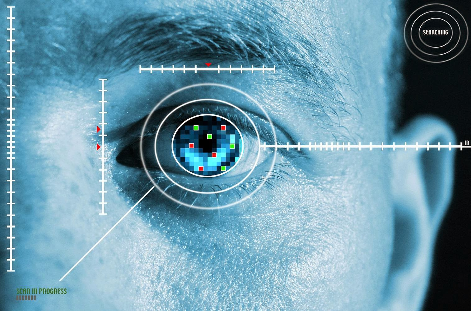 Karsof Systems biometric security