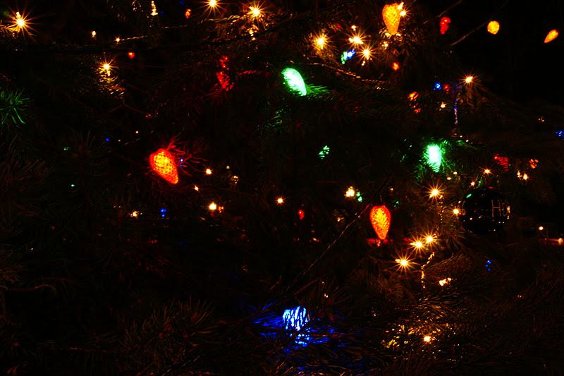Hubbard Park Christmas Lights
