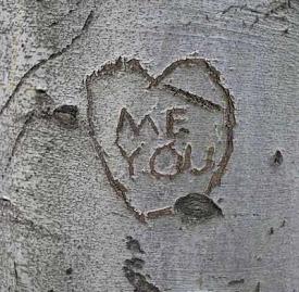 Tree vandals
