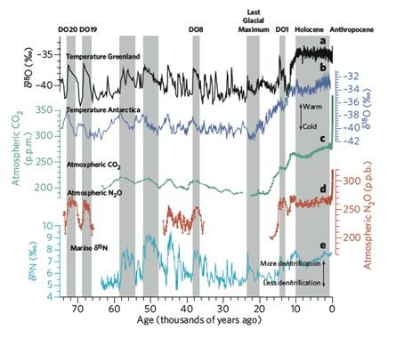 Nitrogen Cycle Human Impact And Human Impact Nitrogen