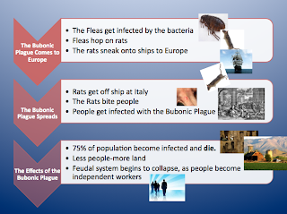 causes of the crusades essay