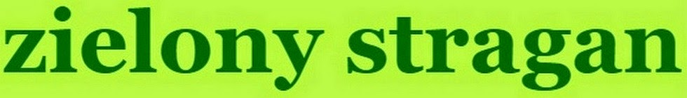 zdrowystragan.blogspot.com