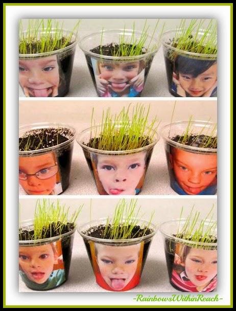 Science, Seeds, Spring! via RainbowsWithinReach