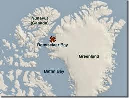 Baffin bay birds aves de la bahía de Baffin