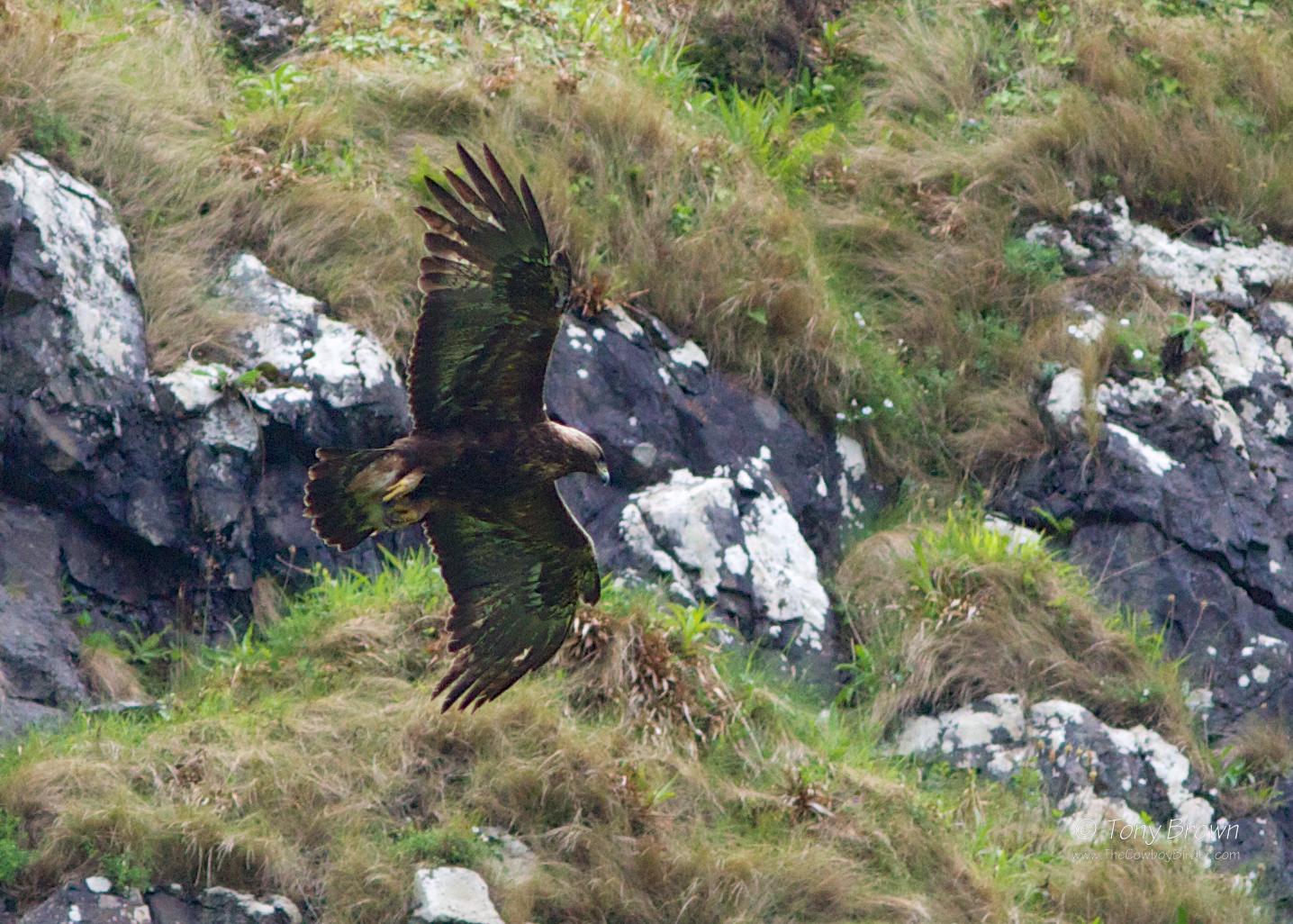 Canna, Isle of Skye