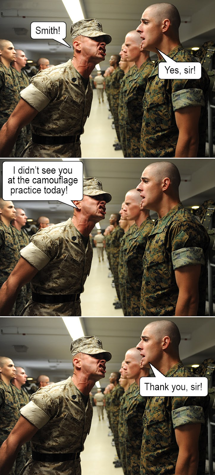 Army Camouflage Practice ~ Funny Joke Pictures