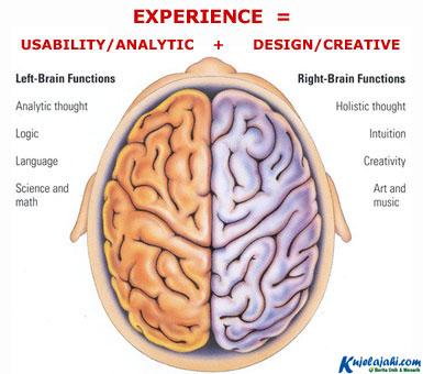 Inilah Mitos Otak Kiri dan Otak Kanan - Kujelajahi.com