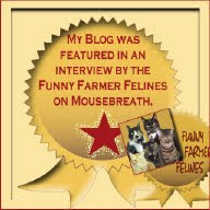 We Were On Mousebreath!