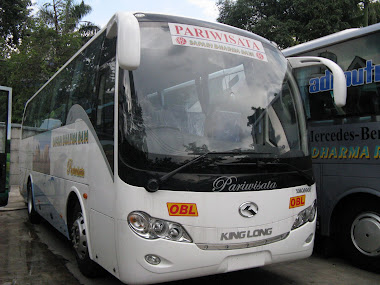 Medium 33s Safari Dharma Raya