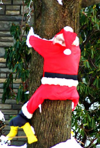Funny pictures santa claus