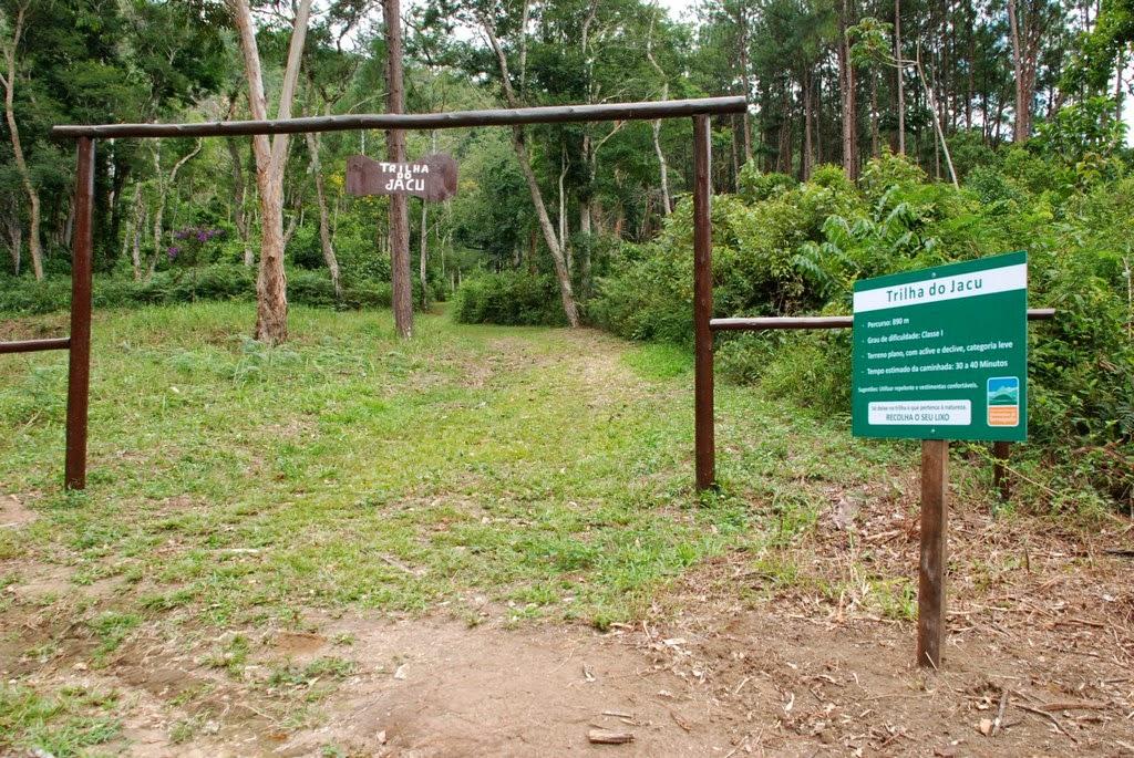 Foto 119 - crédito para Marco Esteves: Acesso à Trilha do Jacu na sede Santa Rita do Parque Montanhas de Teresópolis: 890m de extensão e grau leve de dificuldade