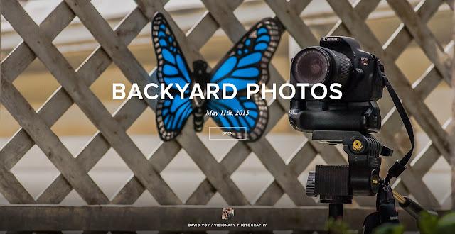 http://davidvoy.pixieset.com/backyardphotos/
