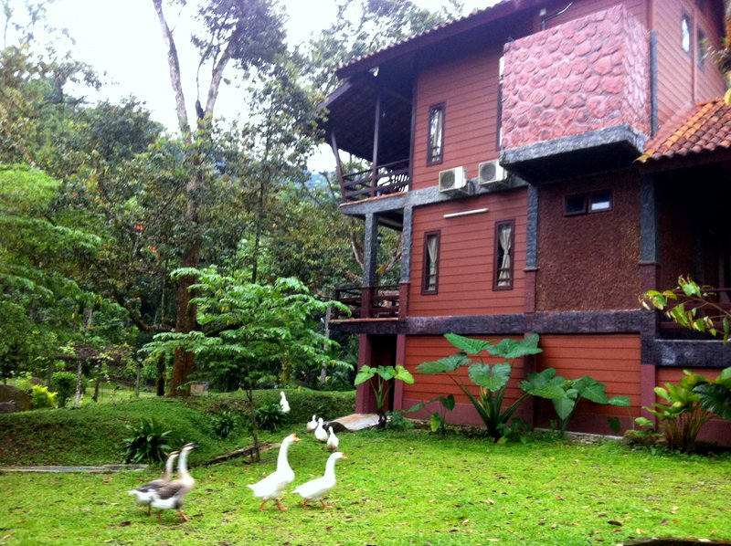 Travelholic Hotel Review Sentosa Villa Taiping