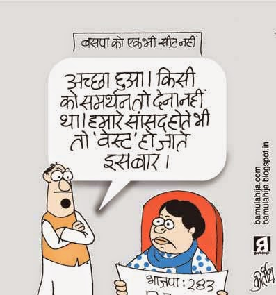 mayawati Cartoon, bsp cartoon, assembly elections 2014 cartoons, election 2014 cartoons, cartoons on politics, indian political cartoon