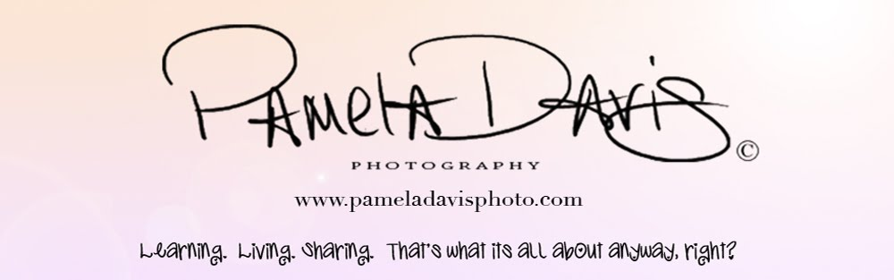 Pamela Davis Photography