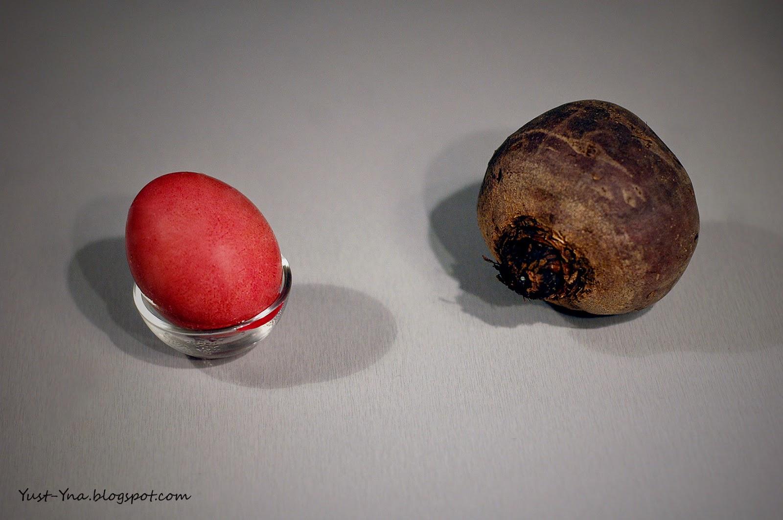 Farbowanie jajek burakiem