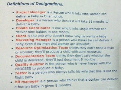 Definition of Designations in IT Project