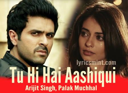 Tu Hi Hai Aashiqui - Harman Baweja & Ayesha Khanna
