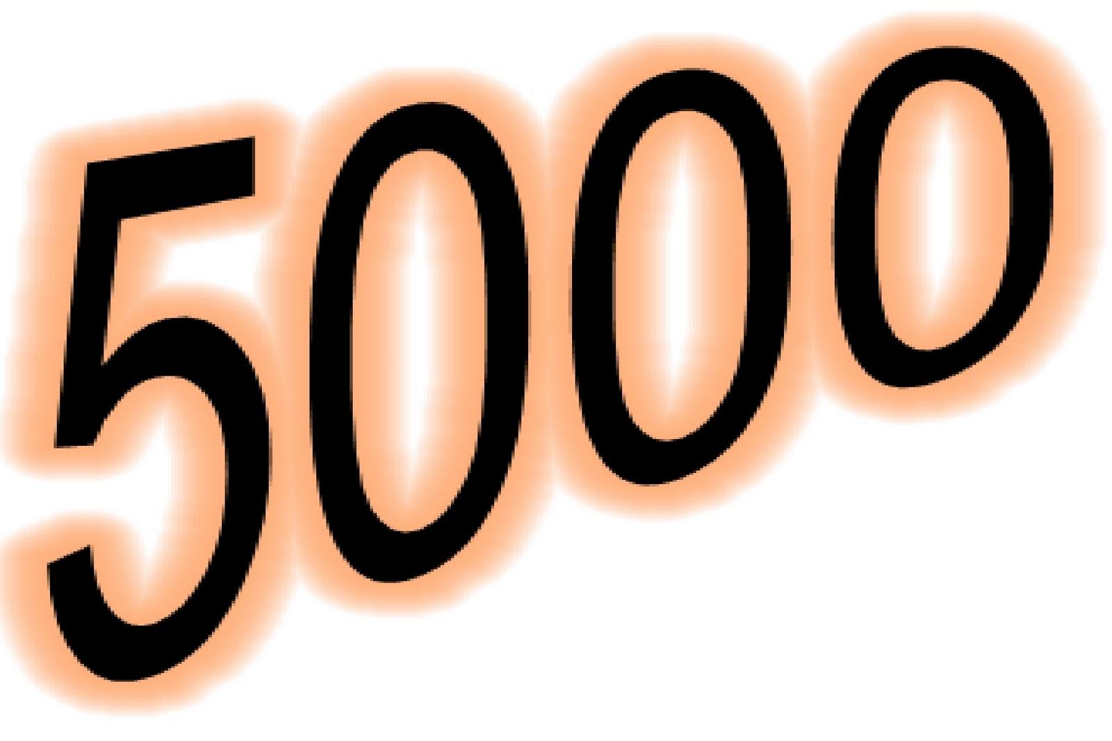 5,000 €