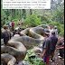 World's Biggest Anaconda Found In The Philippines?