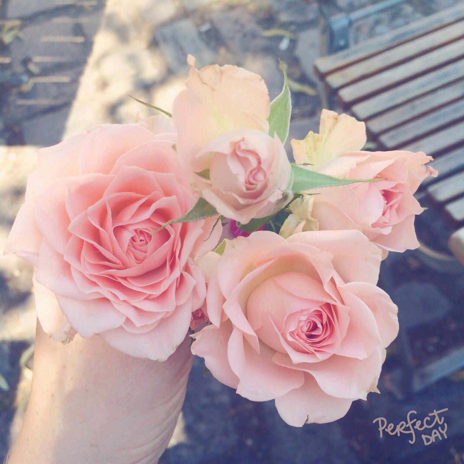 Samstagskaffee und Blumen