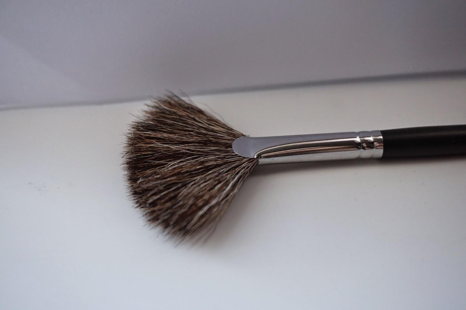 Crown Brush Review C600 Design Fan - Dusty Foxes Beauty