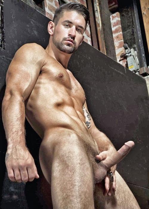 Posando Desnudo