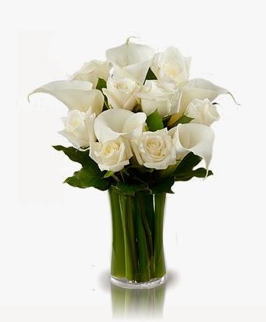 bloomex-white-elegance