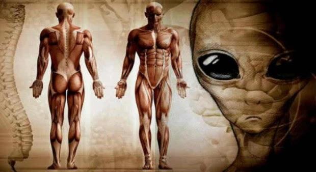 Δρ Silver: Η Ανθρωπότητα έχει Εξελιχθεί σε έναν άλλο Πλανήτη (video)