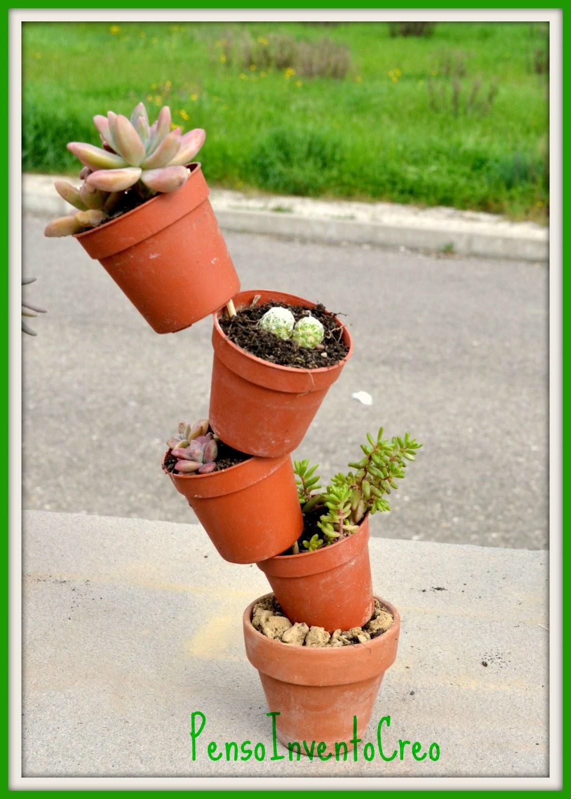 Giardino di piante grasse mini stand di succulente in for Vasi piante grasse
