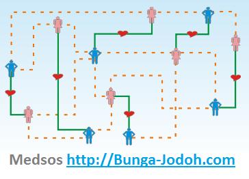 bunga-jodoh.com