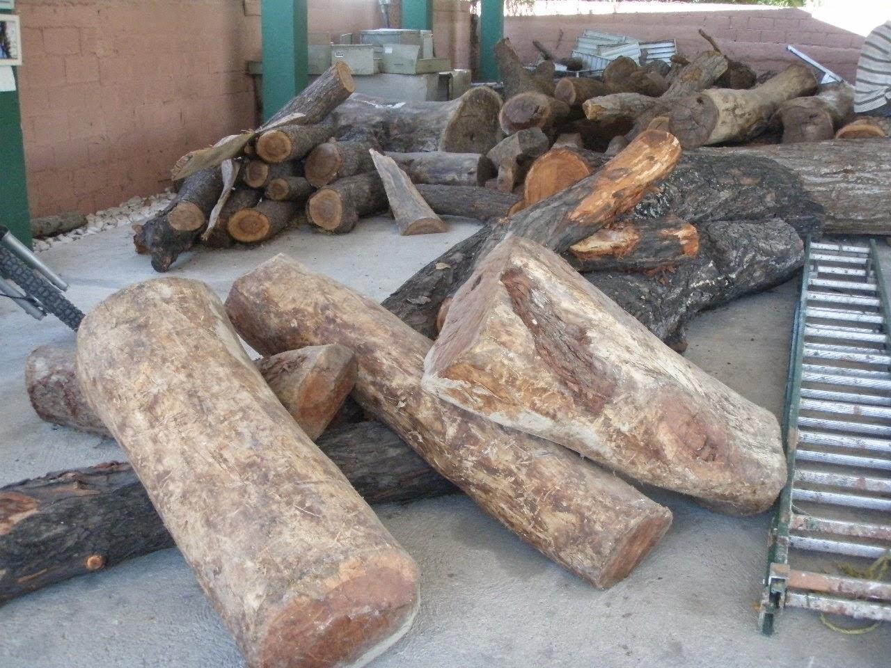 Ecos del sur barahona medio ambiente incauta madera en taller de ebanister a - Taller de ebanisteria ...