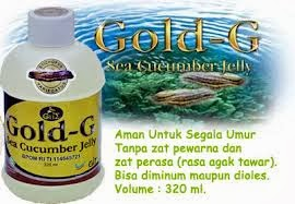 Obat Herbal Nyeri Sendi