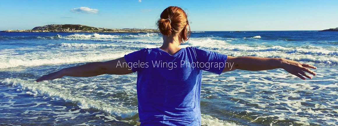 Angeles Wings Photography