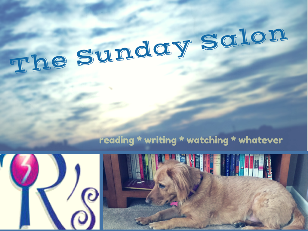 The Sunday Salon on The 3 Rs Blog, 11/23/14