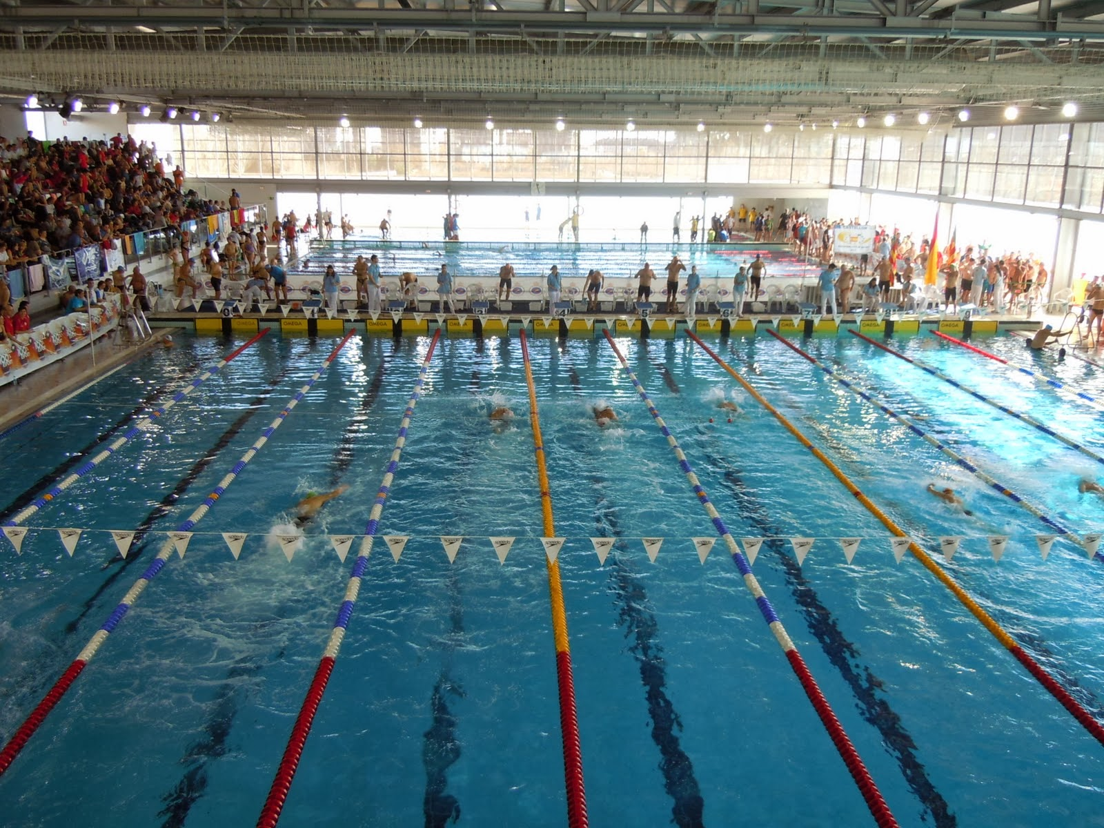 Chirriako swim for Piscina castellon