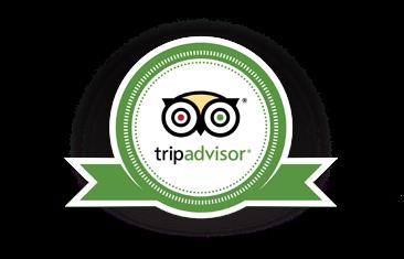 Trip Advisor Contributor