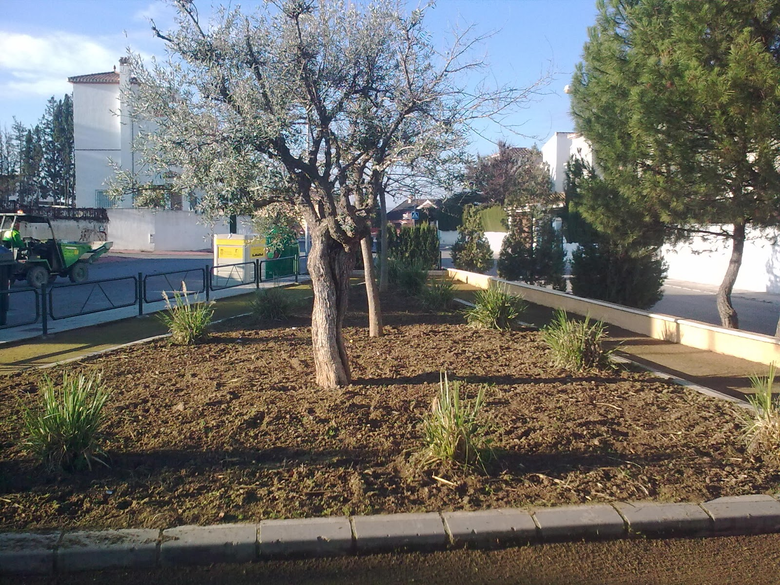 Parques y jardines de ogijares mantenimiento parque pedrizas for Mantenimiento de parques y jardines