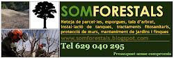 JARDINERS I FORESTALS DE CONFIANÇA