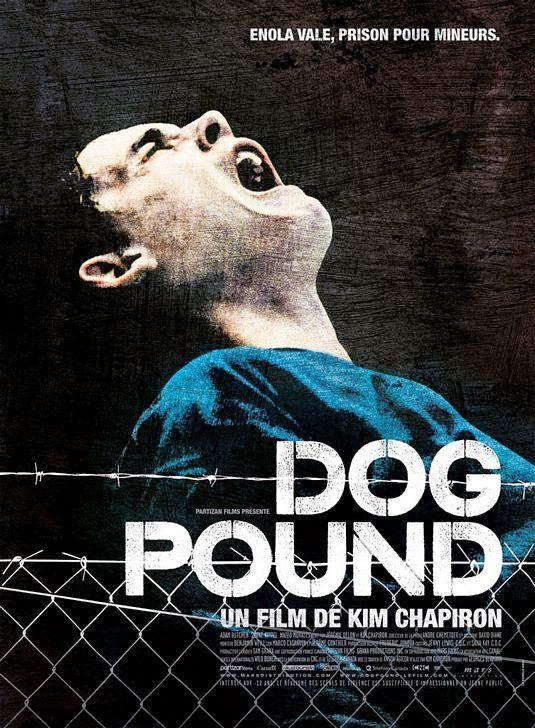 perrera, Kim, Chapiron, dog, pound