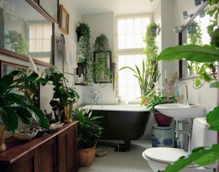An ordinary bathroom is transformed into a beautiful oasis through an abundance of house plants