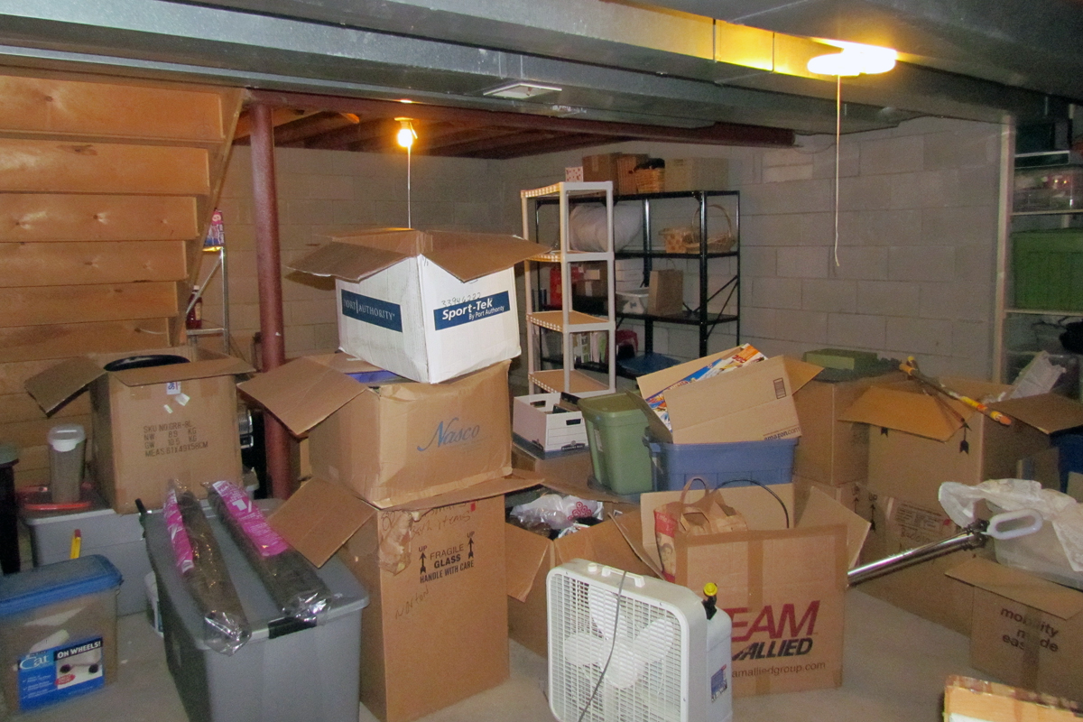 64 366 basement cleaning